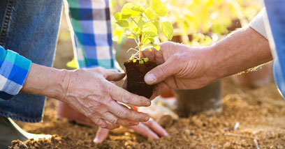 The benefits of volunteering for seniors.